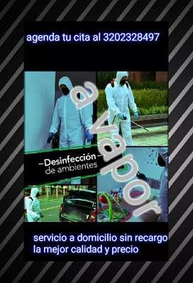 Desinfeccion a vapor y temubulizacion