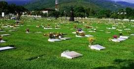 Lote funerario se vende o se permuta