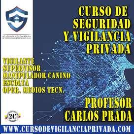 Curso en S_EGURIDAD y vigilancia privada