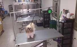 Pet Shop, SPA y Veterinaria