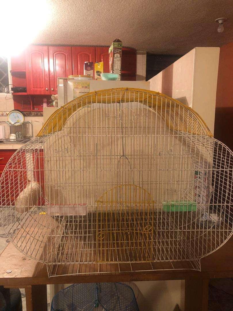 Vendo Jaula de canarios 0