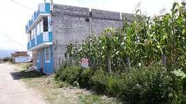 Terreno 378 m² Vendo en San.A. IBARRA