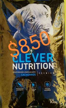 Alimento PREMIUM cachorros envío sin cargo