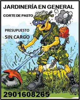 Cortés de pasto