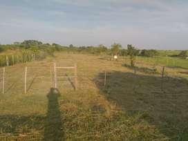 Vendo terreno en Nemesio Parma, Posadas