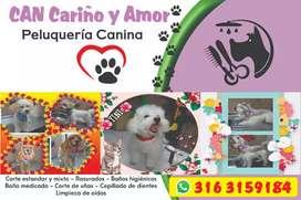 Peluqueria canina can cariño y amor