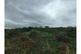 terreno hectareas en venta montecristi