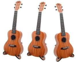 UKELELE CONCIERTO guitarra niños y adultos