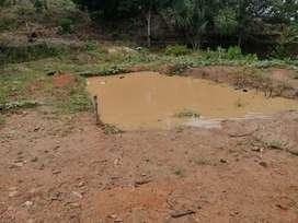 Se vende terreno agrícola 35 has en bajo shimashiro Pki ideal para cultivo de Kion