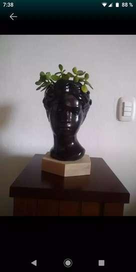 Hermosa maceta con planta