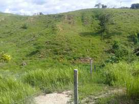 FINCA GANADERA muy buena ubicación acerca al 15 vía petrosantander sabana de torres