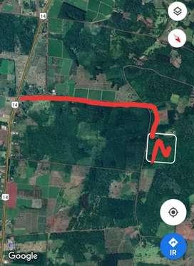 VENDO CHACRA 21 HECTAREAS. Zona guarani