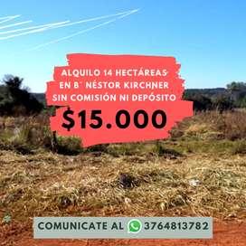 Alquilo terreno de 14 hectáreas