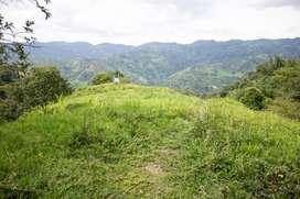 LA VEGA - CUNDINAMARCA (LOTE 37.200 M2)