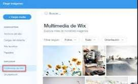 crear paginas web mediante wix