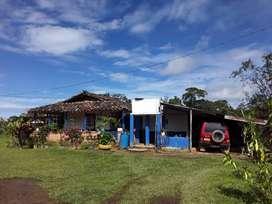 Se vende finca en Yolombo Antioquia