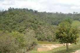 Lote / terreno 10000 mts2 San Vicente Antioquia