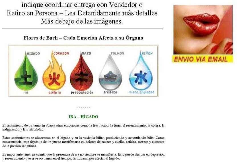 Flores de Bach Vademecum + Amplia Ayuda + Test + Resumen Curs Kit x 4 0