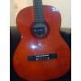 Liquido Guitarra Nueva con Funda Romulo