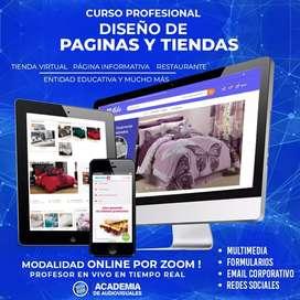 Curso profesional de diseño de paginas web
