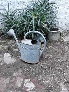 Regadera antigua de plantas