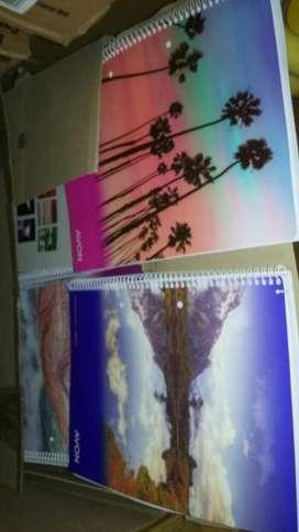 Cuadernos de 84 Hojas
