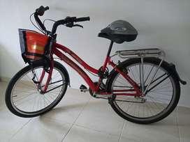 Hermosa Bicicleta Playera
