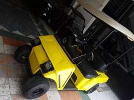 Carro de golf electrico