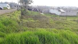 Venta de lote  de terreno sector la isla pifo