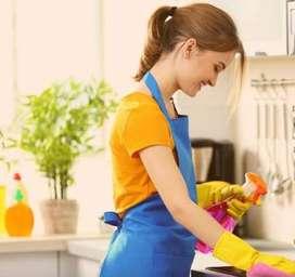 Asistente de Servicio Domestico