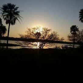CAMPO  en venta 350 hectareas- Chaco - AR