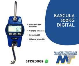 bascula digital 300kg