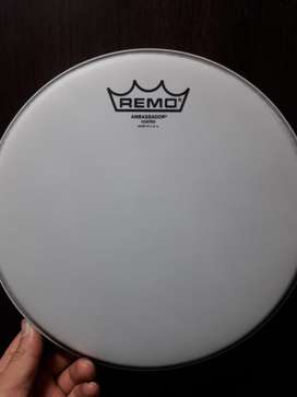 Parche Remo Ambassador Coated Usa 10