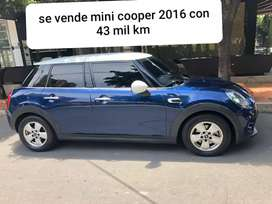 Se vende mini cooper