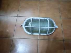 tortuga oval