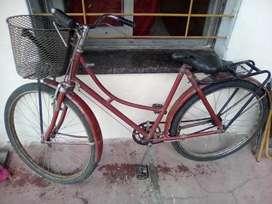 Bicicleta 2000