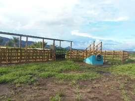 Finca ganadera de 160 hectáreas en maya Cundinamarca