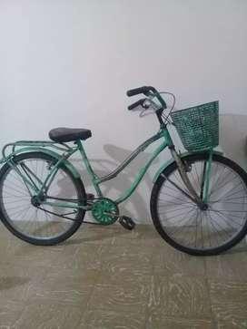 Bicicleta con canasto y porta equipaje