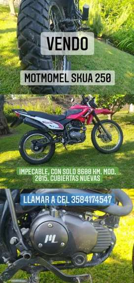 IMPECABLE!!!  Skua 250