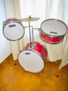 Vendo batería profesional