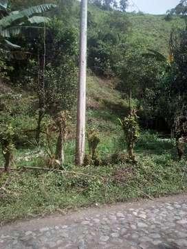 Venta de lote de terreno en la via las juntas a 1 km de gualchan