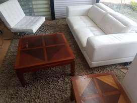 Sofa de 2 puestos , silla de diseñador blanca , mesa de centro , mesa esquinera , y tapete