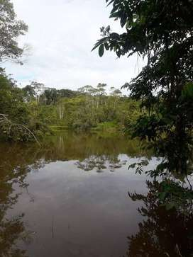 Remato terreno - PARCELA RURAL en Iquitos