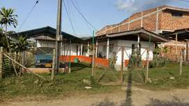 Lote Sector Naranjales