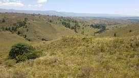 Vendo Terreno en Villa Yacanto (Santa Rosa de Calamuchita) de casi 1 hectarea (9807 mtrs.2)