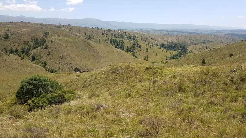 Vendo Terreno en Villa Yacanto (Santa Rosa de Calamuchita) de casi 1 hectarea (9807 mtrs.2) 0