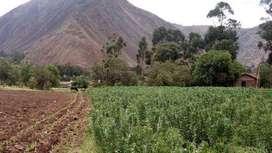 Hermoso terreno en Huayoccary Urubamba Valle Sagrado 375m2 con servicios, a 3 cuadras del hotel Inkaterra Valle. paisaje