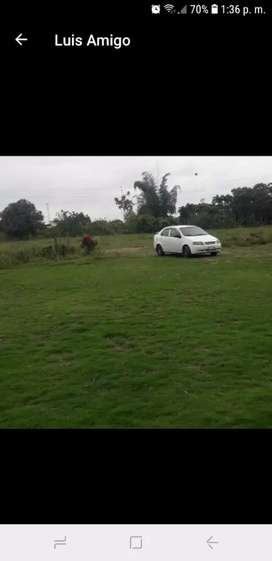 Chofer Con Auto