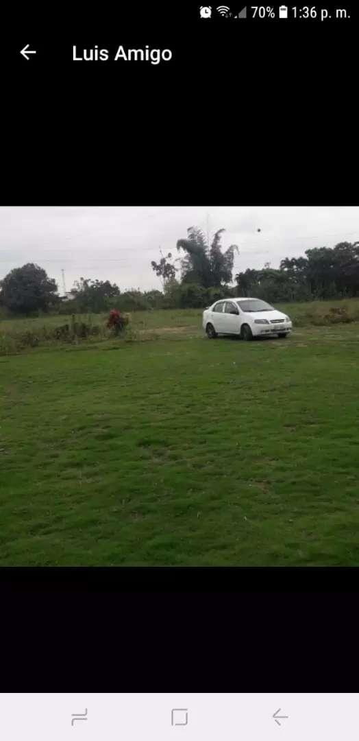 Chofer Con Auto 0
