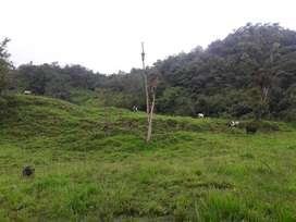 Finca para producción ganadera o agrícola en la Amazonía ecuatoriana
